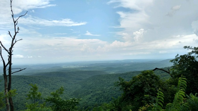 ozarks view