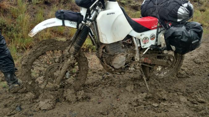 steve mud 2