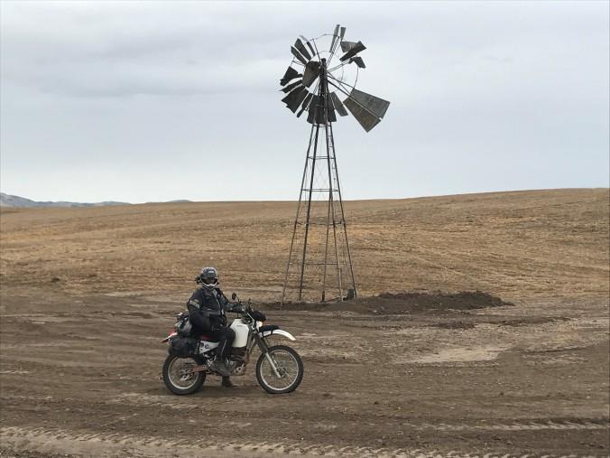steve windmill
